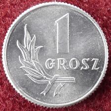 Poland 1 Grosz 1949 (D1204)
