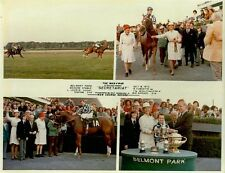 SECRETARIAT - 1973 MAN O' WAR STAKES 8X10 HORSE RACING PHOTO COLLAGE!