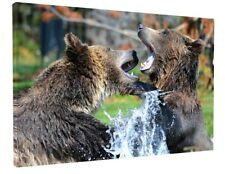 GRIZZLY BEARS CANADA CANVAS PICTURE PRINT WALL ART CHUNKY FRAME LARGE 1825-2