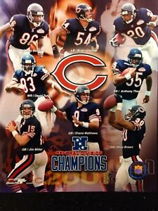 CHICAGO BEARS 2001 NFC Central Division CHAMPIONS 8x10 Photo