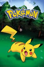 POKEMON Poster - PIKACHU CATCH - New Pokemon gaming poster FP4351