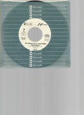 "JIM  CHESNUT - 45 -          ""  THE WRONG SIDE OF THE RAINBOW ""          VG++"