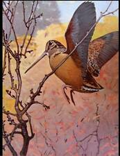 WoodCock 1 by Lynn Bogue Hunt