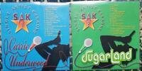 2 CDG COUNTRY KARAOKE DISCS SUGARLAND/CARRIE UNDERWOOD SAK SINGER ARTIST CD+G .