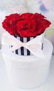 6 konservierte ewige haltbare Rosen Rosenköpfe Deko Valentinstag Geschenk ROT