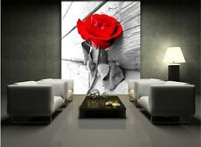 Large PHOTO WALLPAPER bedroom & living room WALL MURAL nature Red rose black