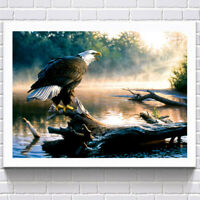 No-frame Diamond Painting Full Drill DIY Embroidery Kit Animal Art Picture BOZ