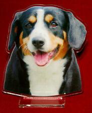 statuette photosculptée 10x15 cm chien bouvier d'appenzell 1 dog hund perro cane