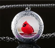 Snow Red Bird Photo Glass Tibet Silver Chain Locket Pendant Necklace#T2