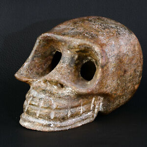 Skull IN Marble Archaic China Hongshan 1870g
