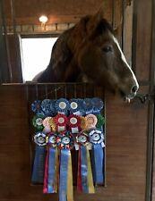 Go Anywhere Horse Show Ribbon Display, Dog Show, Athletics Ribbons