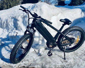 Fat Tire Bike, Dual battery 1500W Bafang M620 Mid-Motor 80km-100km range