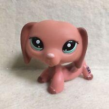 littlest Pet Shop LPS #2046 Brown Dachshund Puppy Dog Figure Toy