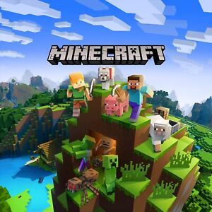 Minecraft Java Pc Account with Warranty (can change password and username)