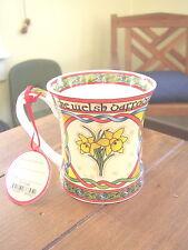 The Welsh Daffodil Bone China Cup or Mug, Clara