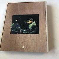 CIGAR Box Moon Garden 2018 Kyle Gellis EMPTY Wood Slide lid Stash Box Crafts