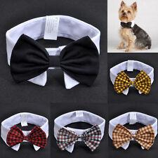 Adorável Cachorro Gato Pet Filhote Gatinho Treliça roupas da moda Laço Gravata colarinho