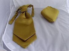 Gold BOYS Polyester Ruche Wedding Tie-Cravat and Hankie Set - Wedding - Pageboy