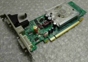 Genuine 256MB Nvidia N93SM2DT-F Geforce 9300GS VGA DVI TV PCIe Graphics Card