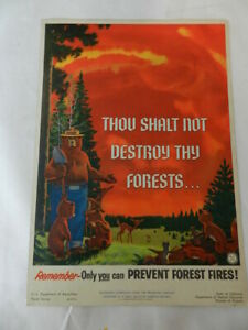 VINTAGE 1957 SMOKEY BEAR  POSTER- U.S. FOREST SERVICE SIGN- WOODSEY OWL- CAMPING
