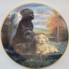 "Franklin Mint Family Circle Limited Ed Numbered Ra2578 Oval Plate 8 3/4"" Long"
