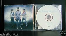 Jonas Brothers - Burnin Up 2 Track CD Single