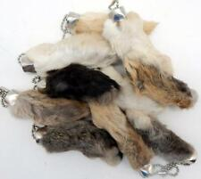Natural Colored Lucky Rabbits Foot (Oryctolagus Cuniculus) Key Chain New
