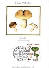 2491+ FDC CARTE 1er JOUR SUR SOIE CHAMPIGNONS PALOMET