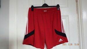 Adidas Climalite size L red white black shorts