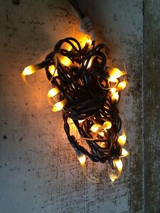 35ct Cream Silicone Bulb Brown Wire Cord Teeny Bulbs Light Strand Set Primitive