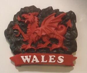 Welsh Dragon  Fridge Magnet