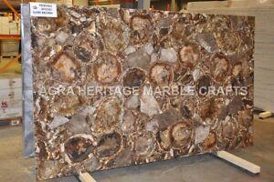 4'x2' Marble Dining Table Top Petrified Wood Inlay Random Art Hallway Decor E242