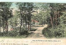 On A Wooded Path Near the Pavilion at Lake Ophelia, Liberty Ny 1907