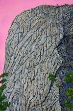EL CAPITAN YOSEMITE PARK CALIFORNIA SUNSET MOUNTAIN ORIGINAL ACRYLIC PAINTING
