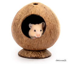 New listing Coconut Hut Hamster House Bed: for Gerbils Mice Small Animal Cage Habitat Decor