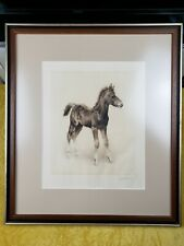 Etching Of A Foal By Kurt Meyer Eberhardt Framed Matted Non Glare Glass