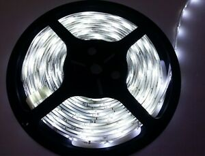 5M Single Colour Flexible LED 5050 SMD Lights 12V in COOL WHITE with 3M tape UK