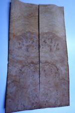 Burr Oak Veneer  48 cm by 14 cm cm (1527)