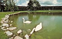 Cable Wisconsin~Telemark Lodge~1960 Postcard