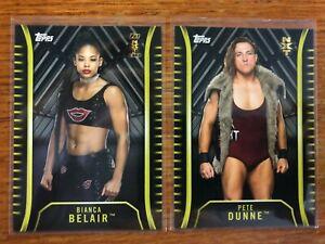 2018 WWE Silver Parallel Card Lot SSP All #'d /25 Strowman Ricochet Belair Rare