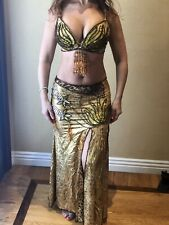 Professional belly dance costume