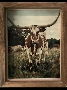 Framed Cow Pictures On Canvas - Farmhouse Wall Decor 8x10 Rustic Frame Wall Art