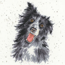 BOTHY THREADS WRENDALE DESIGNS COLLIE DOG COUNTED CROSS STITCH KIT - NEW XHD10