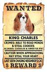 King Charles Spaniel Dog Flexible Magnet Wanted Poster Flex Fridge 4x6