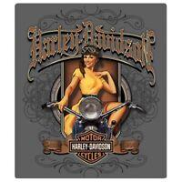 HARLEY-DAVIDSON OLD SCROLL BABE EMBOSSED  MOTORCYCLE SIGN MAGNET CHOPPER VINTAGE