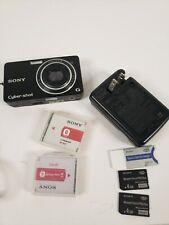 Sony Cyber-Shot DSC-WX1 Digital Camera