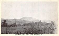 Bridgeville New Jersey~View From Cedar River Farm~Fence Posts~1920s B&W PC