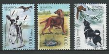Belarus 2010 Animals, Pets, Dogs, 3 MNH stamps