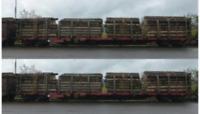 Roco 76141 HO Gauge RailCargo Austria Rnoos Bogie Stake Wagon Set (2) V