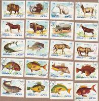RHINO BISON HYENE OKAPI HIPPO BEAR LAMA YACK ELAN SANGLIER FISH ESPADON q50